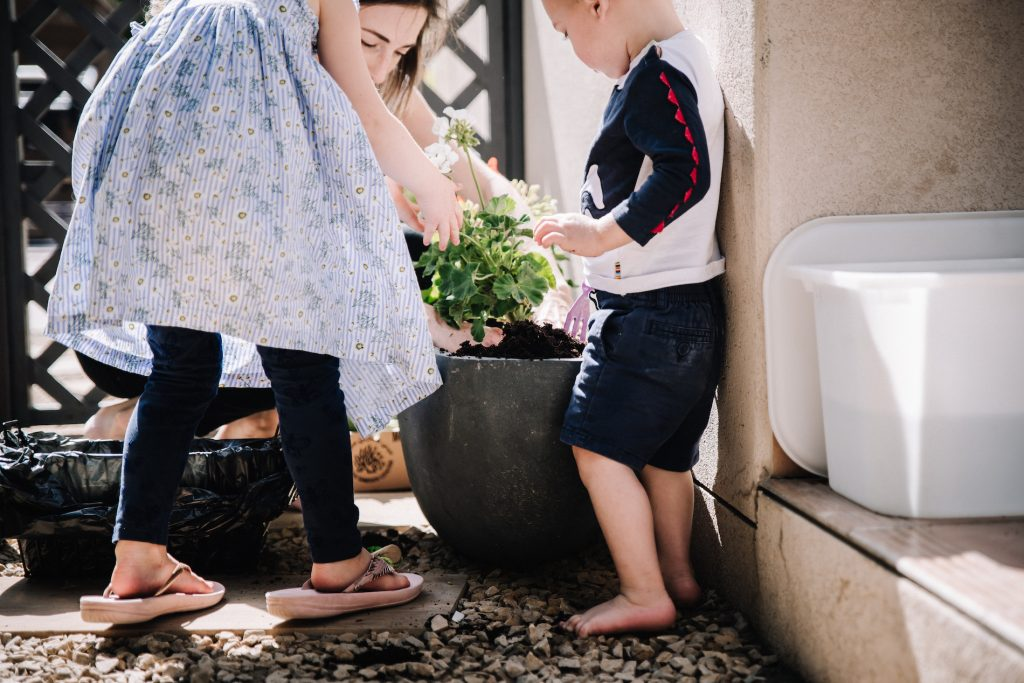 Two young children planting geraniums in a pot
