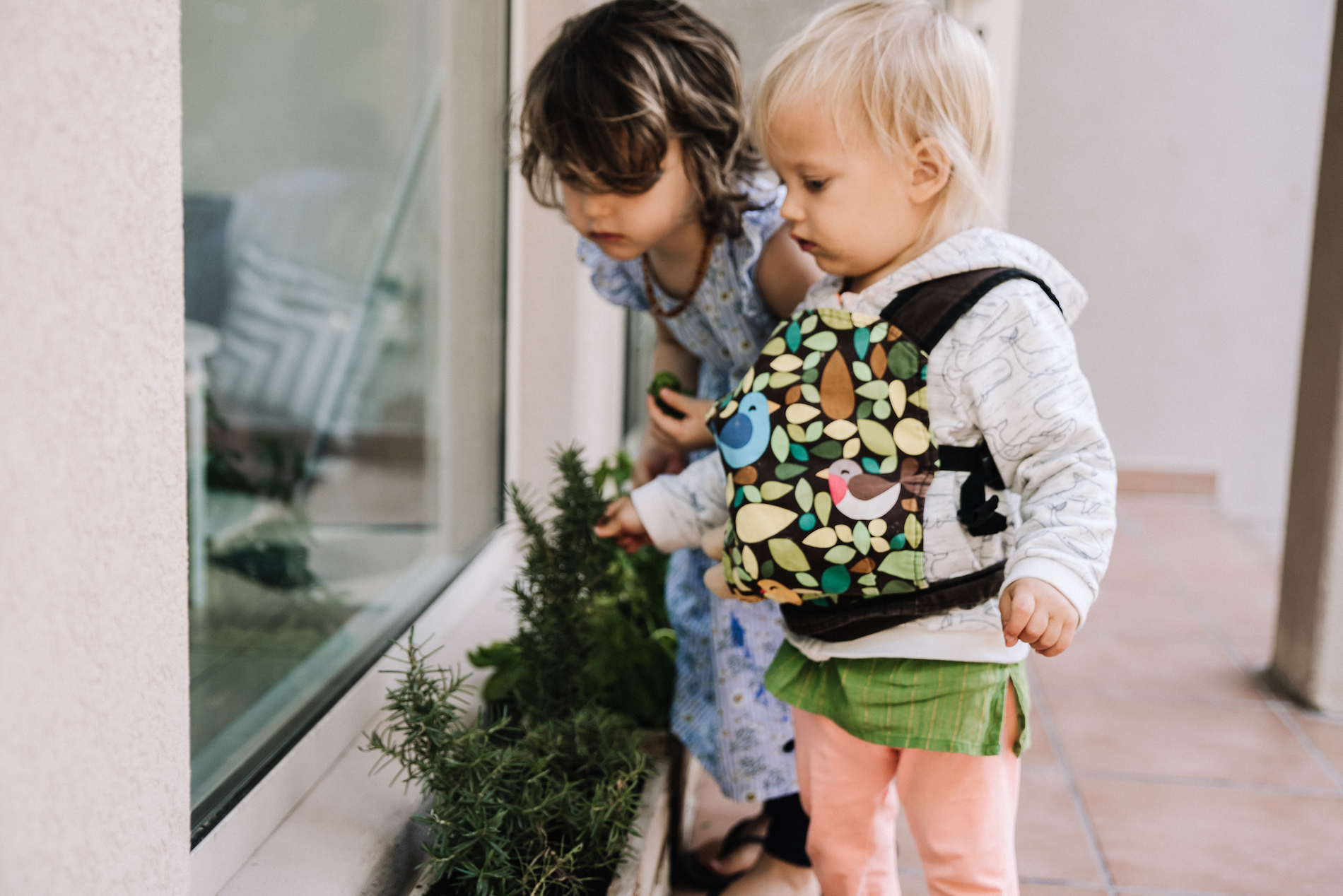 Two young children picking herbs from a plant pot outdoors